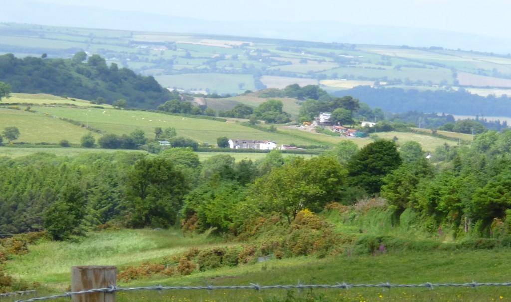 ...again getting good views.....