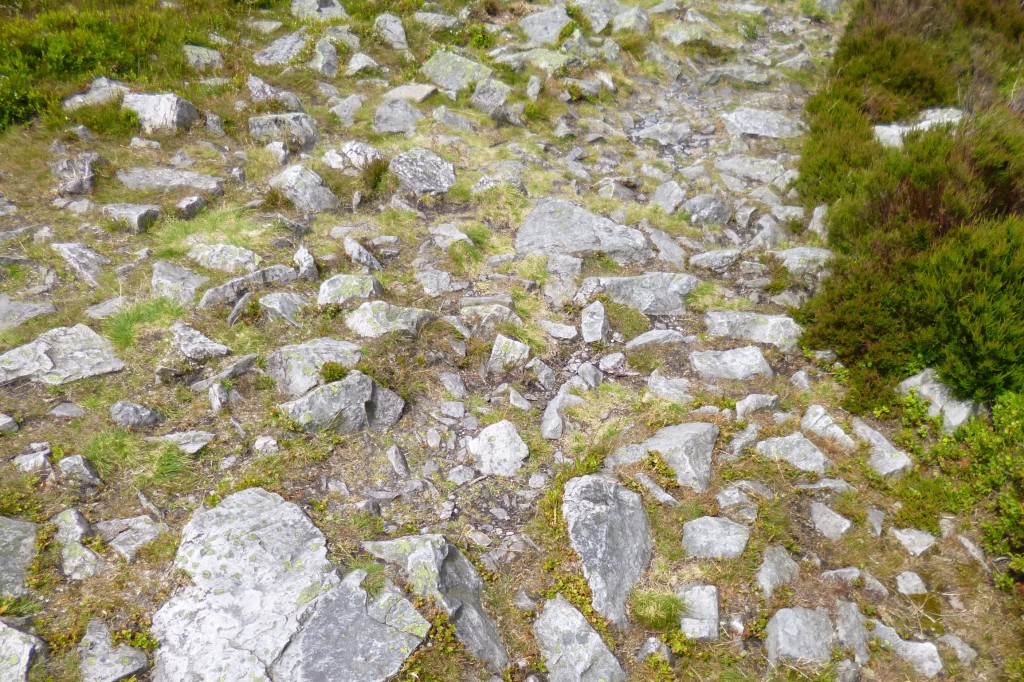 ....a path of very uneven stones.....