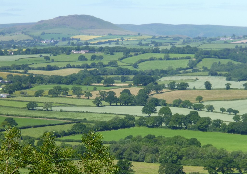 ......but gaps in the trees gave views over the countryside.