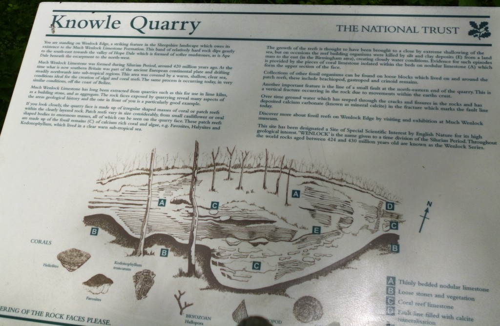 .....the old quarry.....