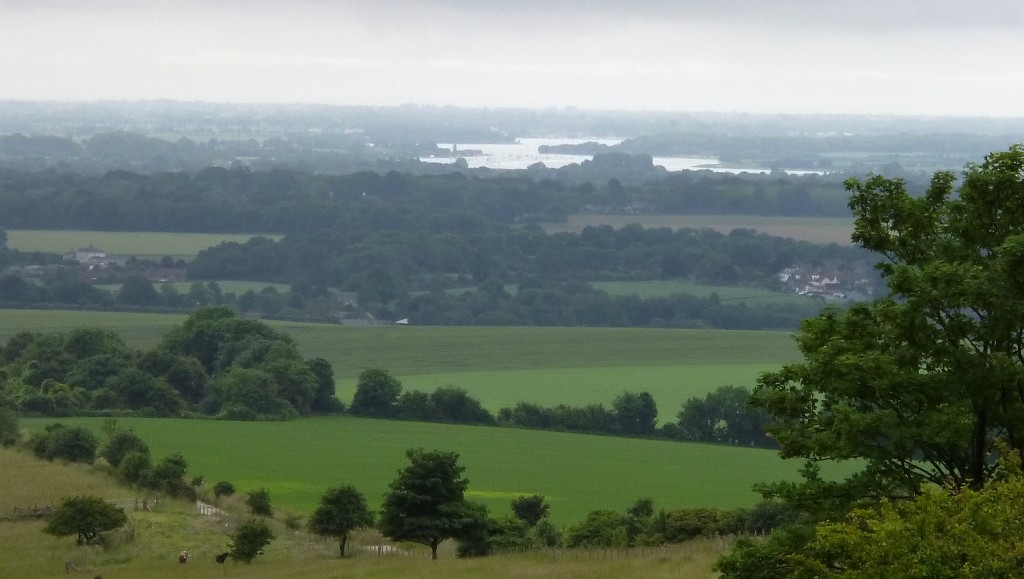 View over Goodwood Estate