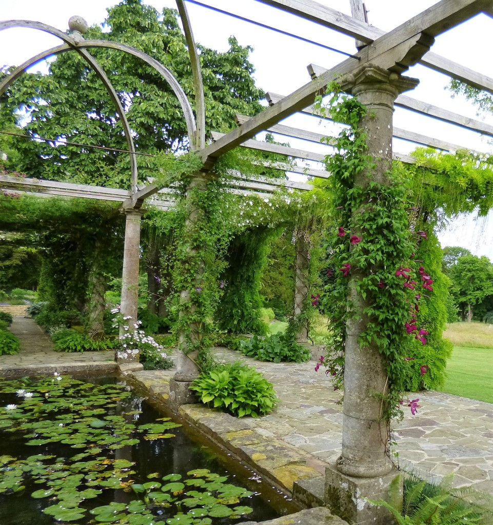 Part of the pergola
