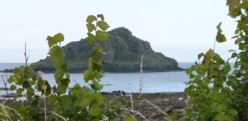 .....this island.....