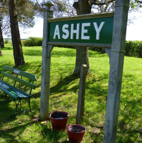 ...Ashey....